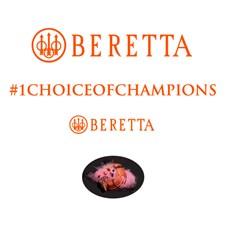 Nouveaux autocollants  pour canons Beretta Orange